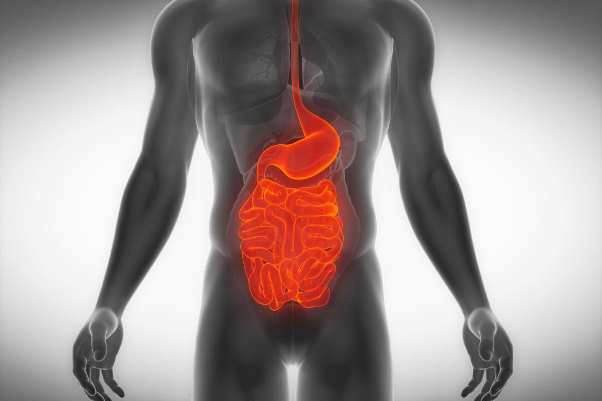 Heller Stuhlgang Nach Magen Darm Infekt