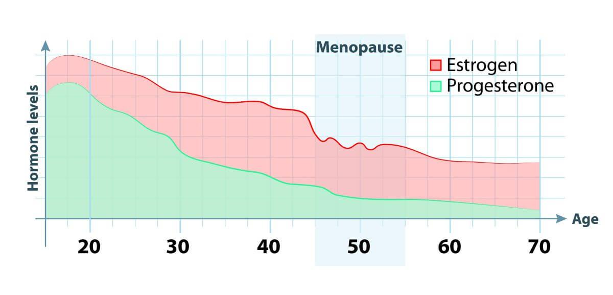 gewichtszunahme durch progesteron creme